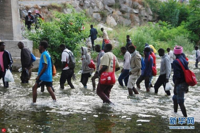 约400名在意大利难民藏身树林 欲偷偷前往法国