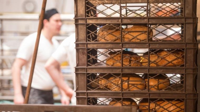 德国食品监管部门隐瞒面包房卫生问题引众怒
