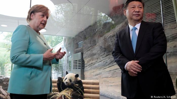 习近平抵达柏林,与默克尔看大熊猫
