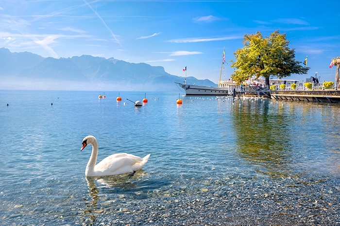 Suisse_Canton_Vaud_ET.jpeg