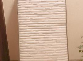 出售单人床垫9.5成新 上面无任何痕迹 有两张,一张50欧元,米兰自取,有意者联