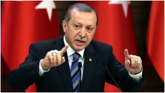 埃尔多安强势回击美方对土耳其保镖团队通缉令