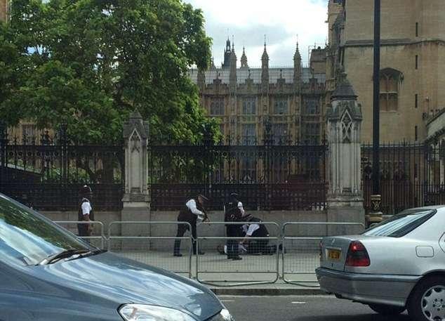 英国警方在议会大厦外逮捕一名男子