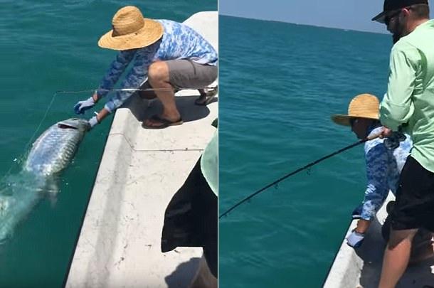 """美国三名渔夫海上垂钓 战利品遭鲨鱼""""打劫"""""""