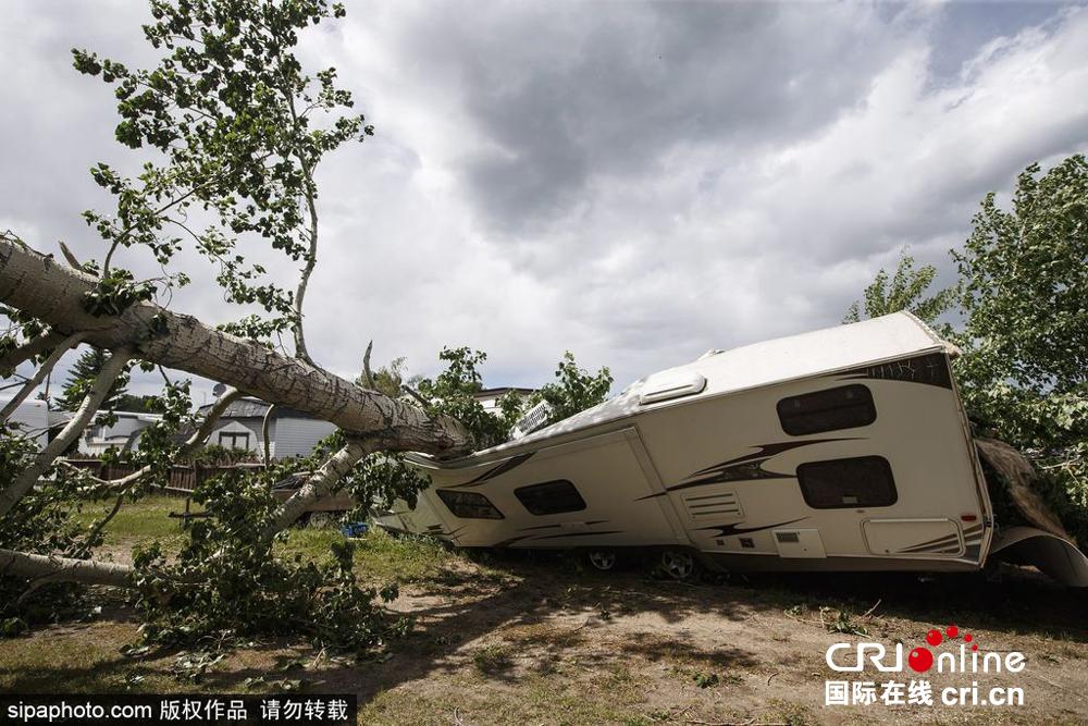 加拿大遭受狂风袭击 公共设施损坏严重