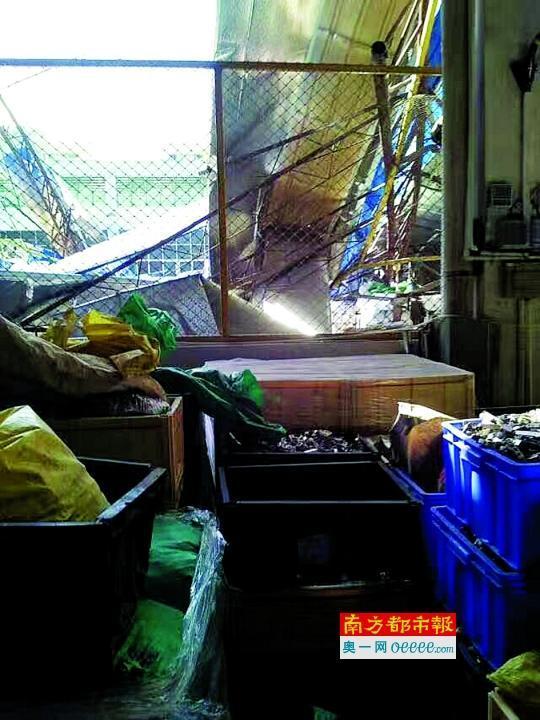 广东一五金厂棚架坍塌3人伤 厂方:施工没通知员工