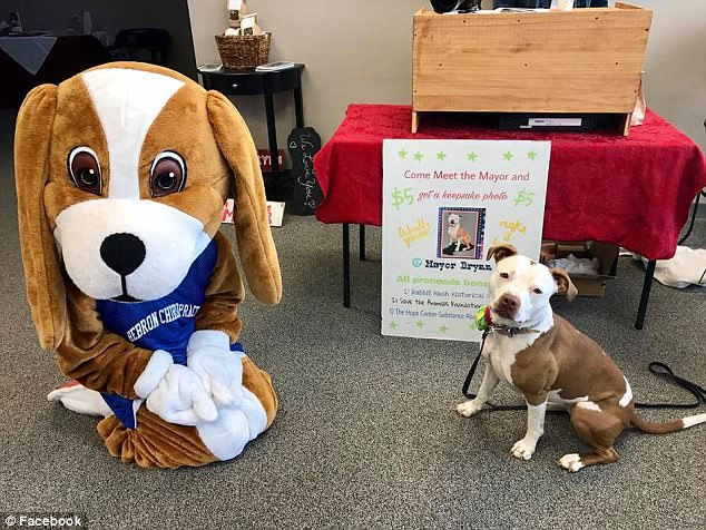 美城市举行别样市长选举 3岁比特犬当选