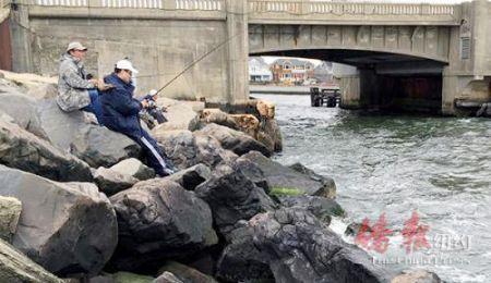 美华裔男子家中藏鱼3000多条 钓鱼网售或面临重罚