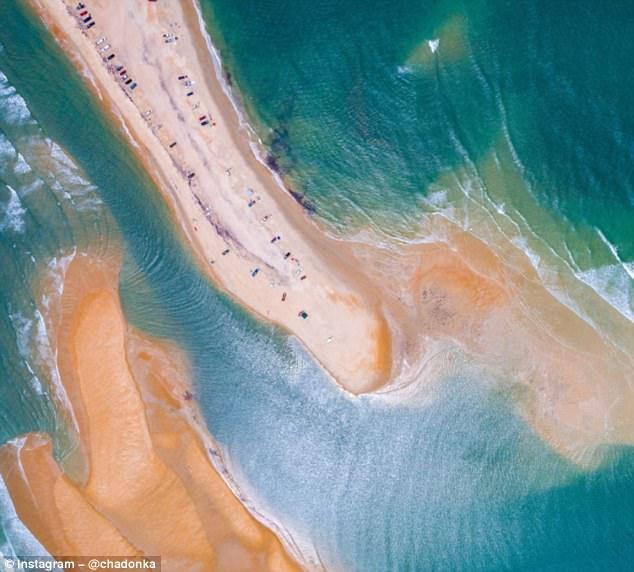"""美海岸惊现""""贝壳岛""""引关注 专家提醒小心鲨鱼"""