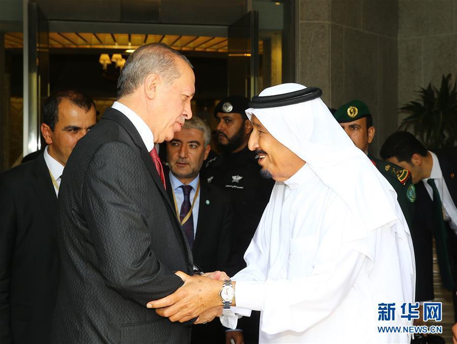 土耳其总统访问沙特 斡旋卡塔尔断交危机