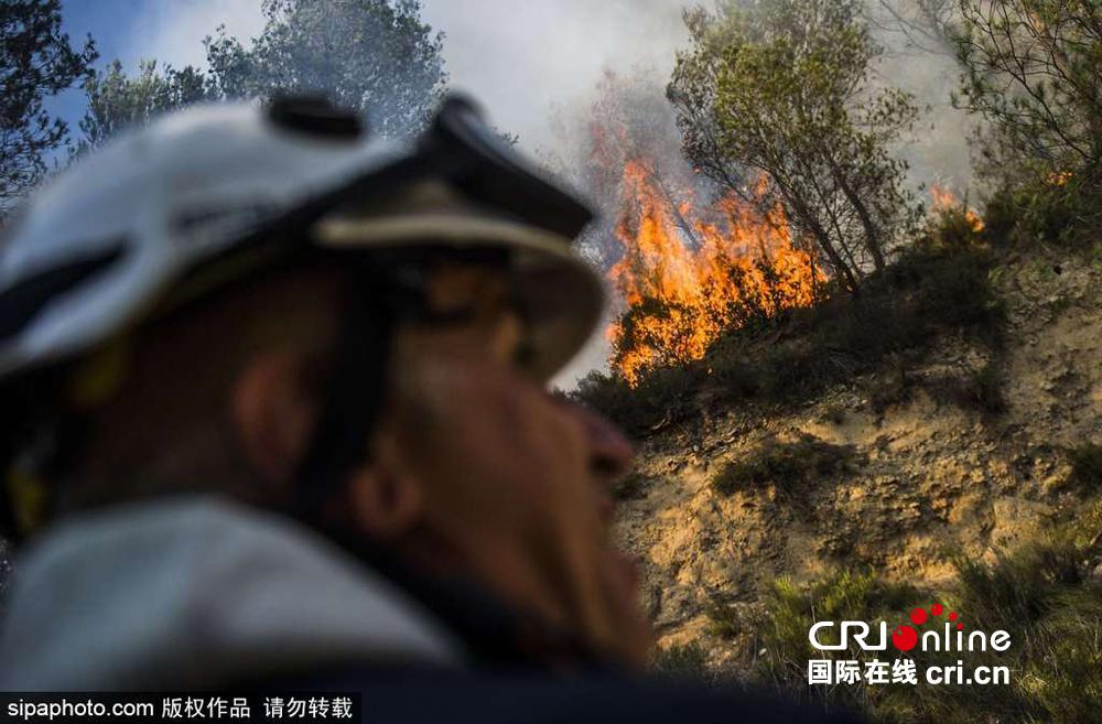 法国西南部林火肆虐 消防员林区扑救